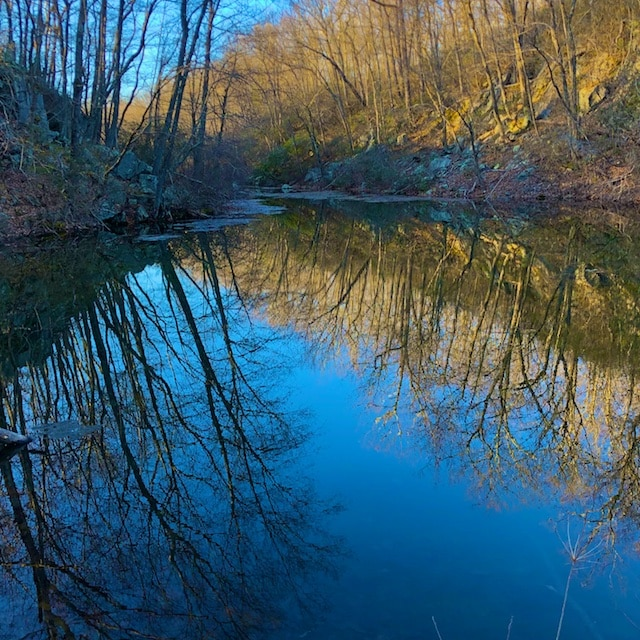 spring water reflection photography