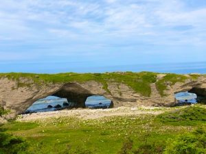 Day 20: Newfoundland Seaside Arches