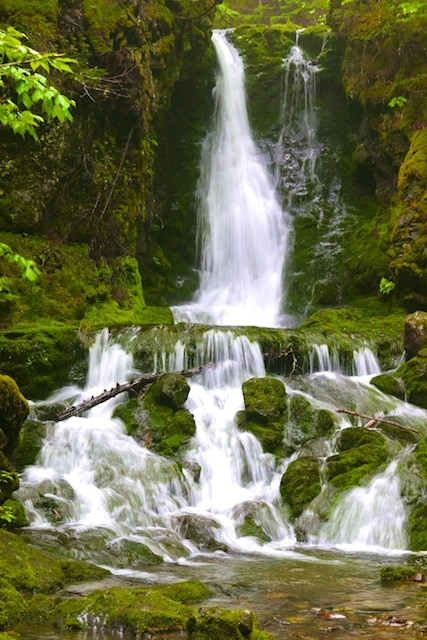 Dickson Falls Hike