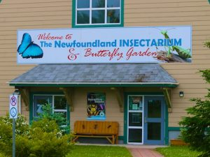 Day 24: Insectarium and Butterfly Garden