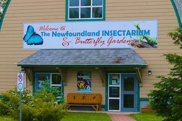 Insectarium and butterfly garden
