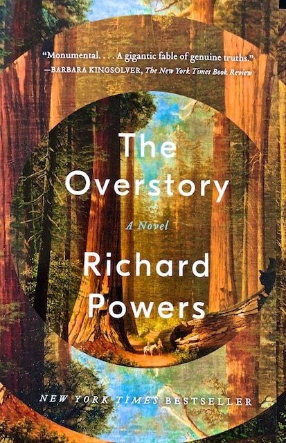 Overstory book review