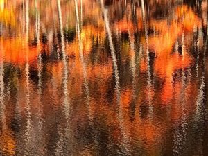 Autumn Reflections on Water (Photos)
