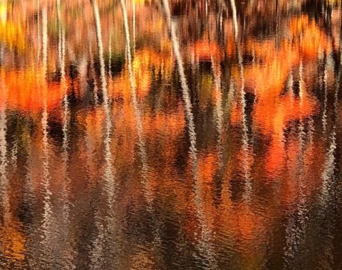 Autumn reflections on water photos