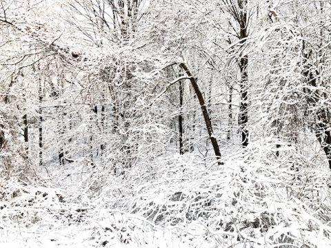 Fairyland snow photos