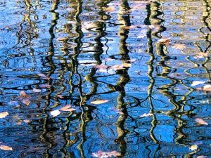 Ripples on Still Waters (Photos and New Poem)