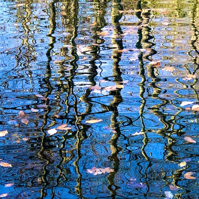 Ripples in Still Water (photos and poem) by Polly Castor
