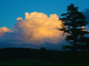 Clouds are Necessary (New Poem by Polly Castor)