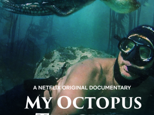 My Octopus Teacher (Movie Review)