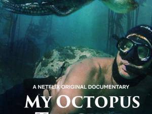 My Octopus Teacher (Movie Review)