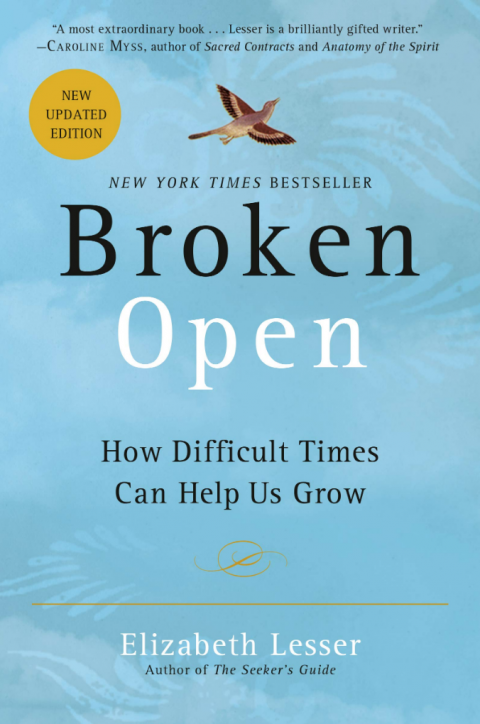 Broken Open book review