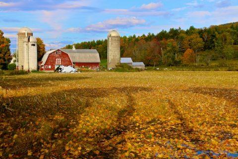 Autumn Vermont Photos