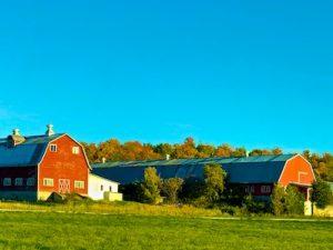 October's Bright Blue Weather (Poem by Helen Hunt Jackson)