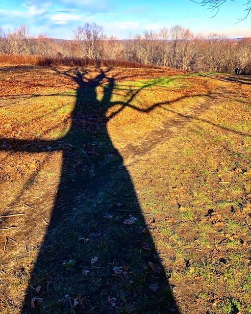 Photos from November Hikes