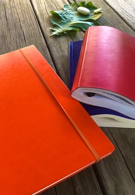 Pages in Bible Study Journal