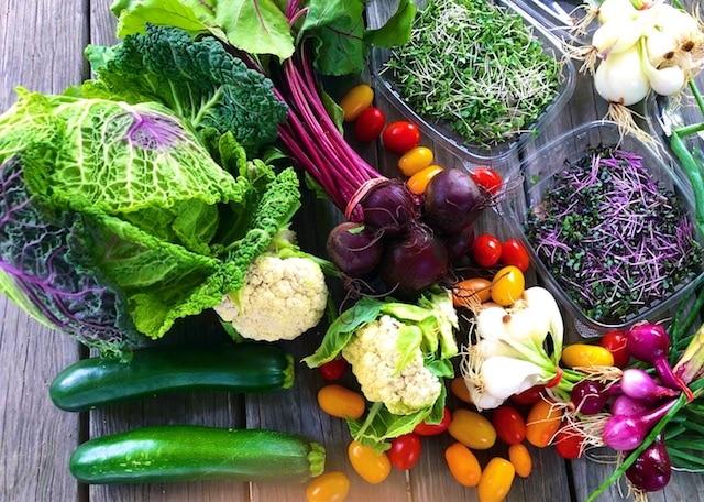 June Farmer's Market Photos (still Life Photography)