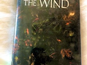 Name of the Wind (Book Review)