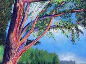 Braided Branches on Long Lake (Plein Air Pastel Landscape Painting)