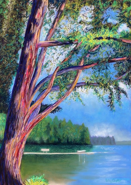 Braided Branches on Long Lake, Plein Air Painting by Polly Castor