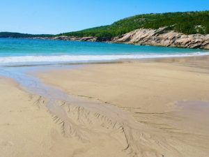 Life's a Beach (New Poem by Polly Castor)