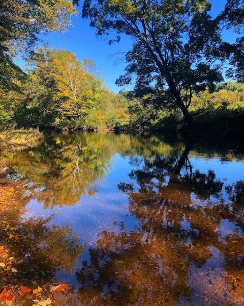 Bent of the River Photos